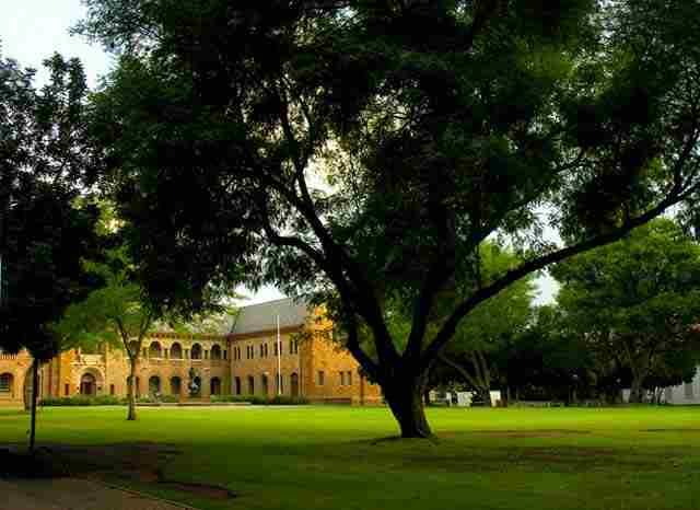 南非 Pretoria university
