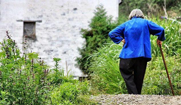 儿子亲手活埋79岁母亲最新进展:背后的人间真相,值得所有人警醒!